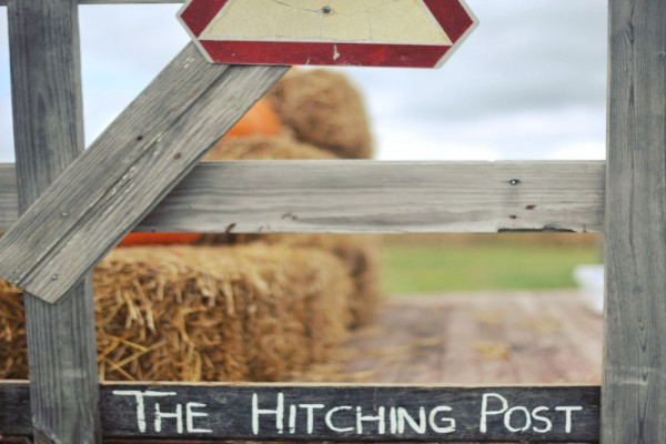the hitching post megs country celebrations